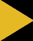 Polygon 2